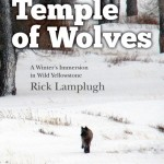 In the Temple of Wolves by Rick Lamplugh