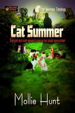 Cat Summer